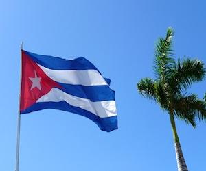 20100908073816-bandera-cubana-y-palma-real.jpg