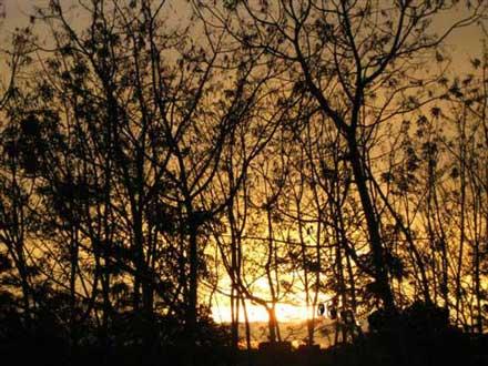 20110120062747-manicaragua-un-atardecer-pa.jpg