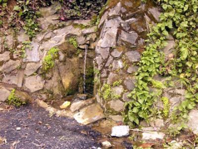 20110603174138-manantial-antojo-serrania-v.jpg