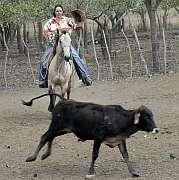 20091019182508-cuidado-del-rebano-una-mirada-juridica.jpg